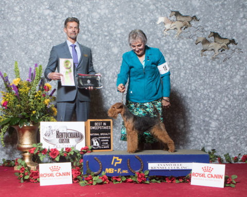 Best in Sweepstakes Brynmawr Chasing Dreams Owners: kathy Rost, Jean Callens Breeders: Kathy Rost, Jean Callens