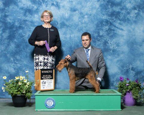 Winners Dog: Abbeyrose Captain Black Bart.  Breeders: Mary Duafala & Judith Anspach & Pamela Allen.  Owners: Daryl Peters & Mary Duafala & Judith Anspach & Pamela Allen.
